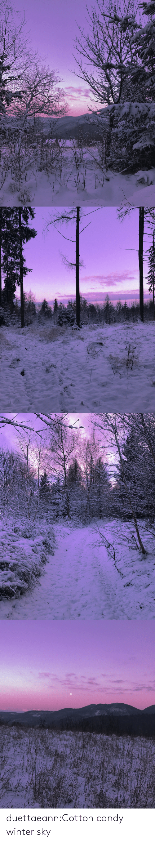 Candy: duettaeann:Cotton candy winter sky