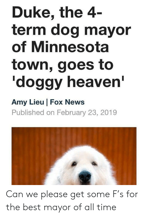 Heaven, News, and Best: Duke, the 4  term dog mayor  of Minnesota  town, goes to  doggy heaven  Amy Lieu Fox News  Published on February 23, 2019 Can we please get some F's for the best mayor of all time