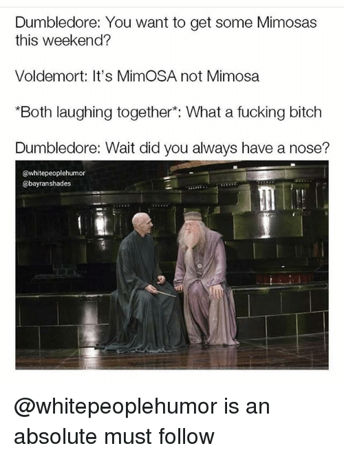 """Bitch, Dumbledore, and Fucking: Dumbledore: You want to get some Mimosas  this weekend?  Voldemort: It's MimOSA not Mimosa  """"Both laughing together*: What a fucking bitch  Dumbledore: Wait did you always have a nose?  @whitepeoplehumor  @bayranshades @whitepeoplehumor is an absolute must follow"""