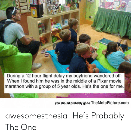 Pixar, Tumblr, and Blog: During a 12 hour flight delay my boyfriend wandered off.  When I found him he was in the middle of a Pixar movie  marathon with a group of 5 year olds. He's the one for me  you should probably go to TheMetaPicture.com awesomesthesia:  He's Probably The One