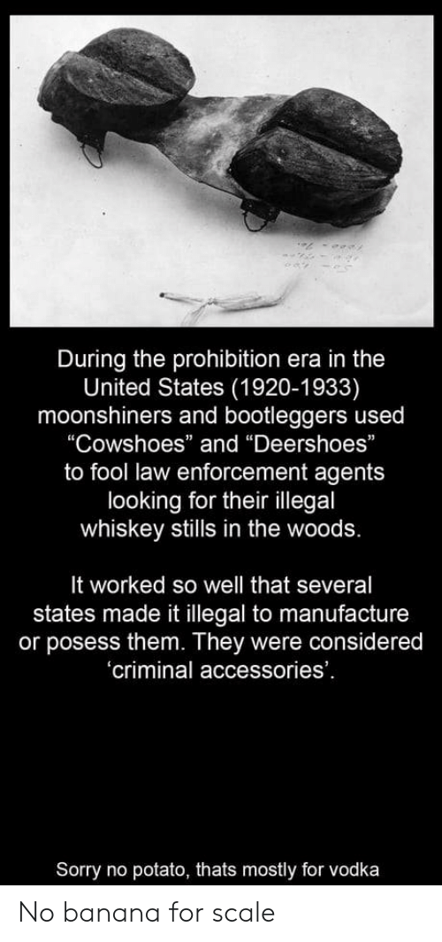 """For Scale: During the prohibition era in the  United States (1920-1933)  moonshiners and bootleggers used  """"Cowshoes"""" and """"Deershoes""""  to fool law enforcement agents  looking for their illegal  whiskey stills in the woods.  It worked so well that several  states made it illegal to manufacture  or posess them. They were considered  'criminal accessories'  Sorry no potato, thats mostly for vodka No banana for scale"""
