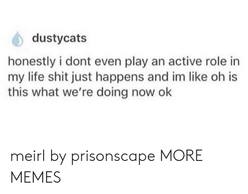 What Were: dustycats  honestly i dont even play an active role in  my life shit just happens and im like oh is  this what we're doing now ok meirl by prisonscape MORE MEMES