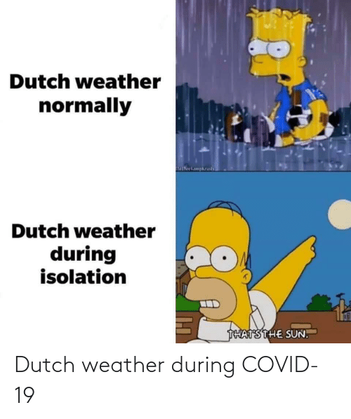 Weather, Dutch Language, and Dutch-Weather: Dutch weather during COVID-19
