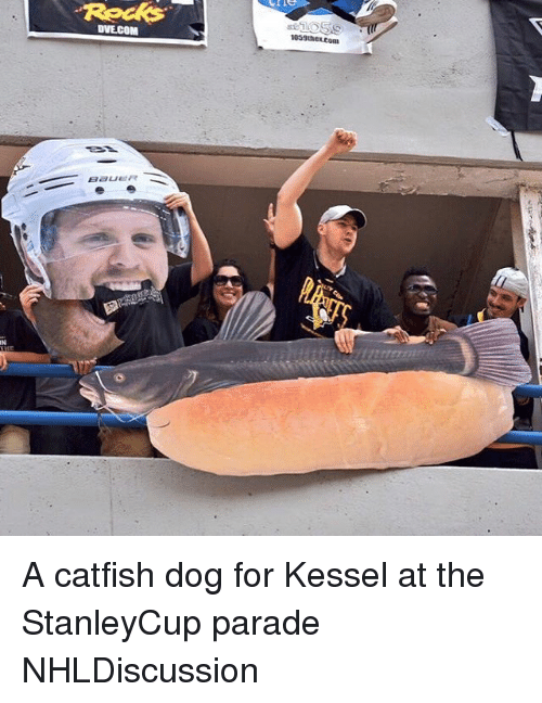 A Catfish: DVECOM  Bauer A catfish dog for Kessel at the StanleyCup parade NHLDiscussion