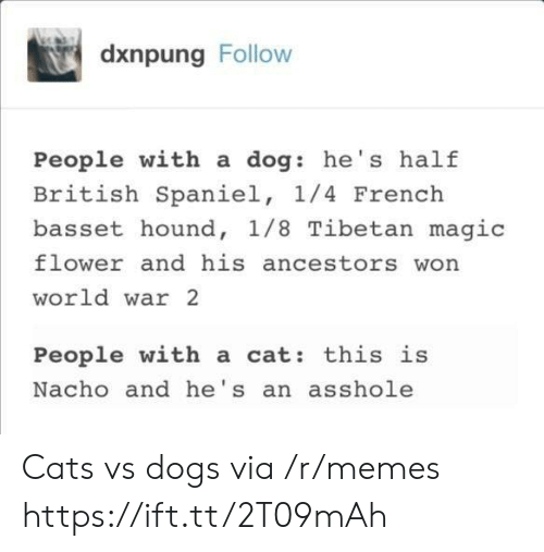 Cats, Dogs, and Memes: dxnpung Follow  People with a dog: he's half  British Spaniel, 1/4 French  basset hound, 1/8 Tibetan magic  flower and his ancestors won  world war 2  People with a cat: this is  Nacho and he's an asshole Cats vs dogs via /r/memes https://ift.tt/2T09mAh