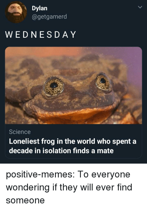 Memes, Tumblr, and Blog: Dylan  @getgamerod  WEDNESD AY  Science  Loneliest frog in the world who spent a  decade in isolation finds a mate positive-memes: To everyone wondering if they will ever find someone