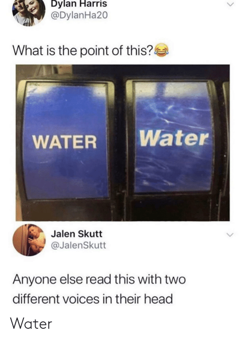 Head, Water, and What Is: Dylan Harris  @DylanHa20  What is the point of this?  Water  WATER  Jalen Skutt  @JalenSkutt  Anyone else read this with two  different voices in their head Water 𝒲𝒶𝓉𝑒𝓇