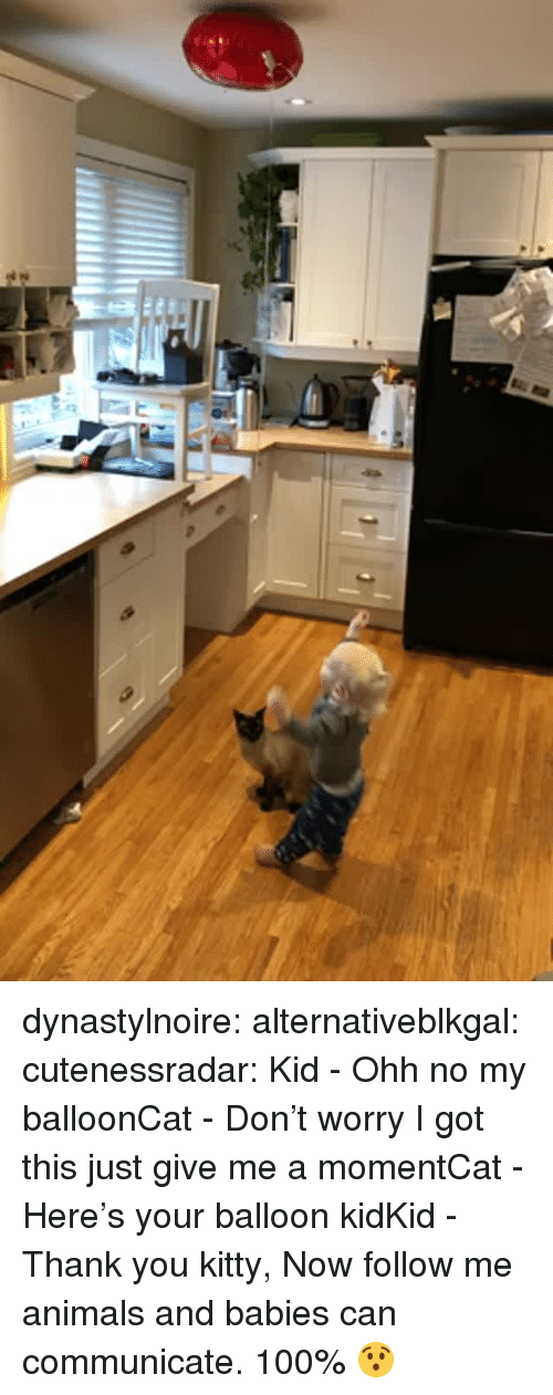 Anaconda, Animals, and Tumblr: dynastylnoire:  alternativeblkgal:   cutenessradar: Kid - Ohh no my balloonCat - Don't worry I got this just give me a momentCat - Here's your balloon kidKid - Thank you kitty, Now follow me  animals and babies can communicate. 100%   😯