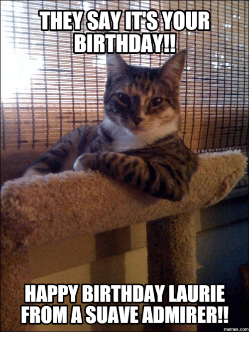 25 Best Memes About Cat Says Happy Birthday Cat Says Happy