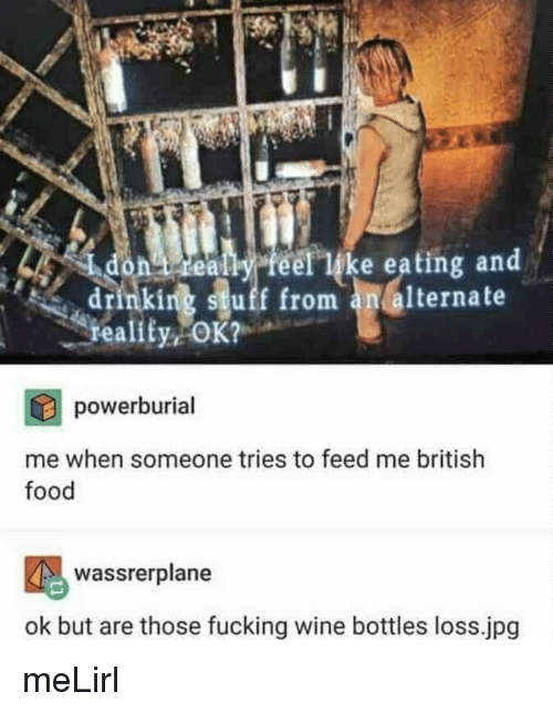 Drinking, Food, and Fucking: eally feel like eating and  drinking stuff from an alternate  reality  powerburial  me when someone tries to feed me british  food  wassrerplane  ok but are those fucking wine bottles loss.jpg