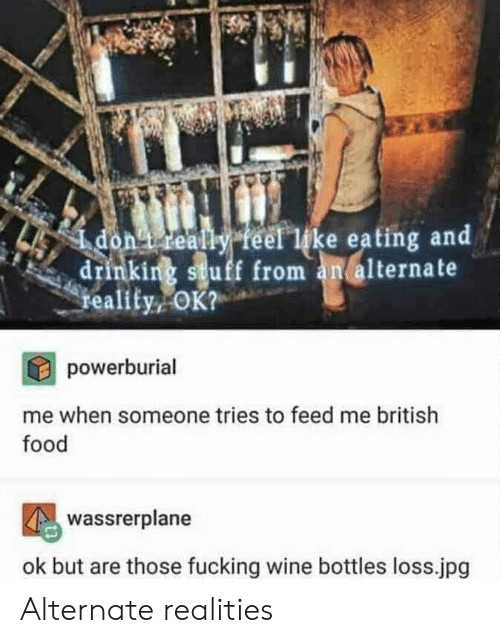 Drinking, Food, and Fucking: ealy feel like eating and  drinking stuff from an alternate  reality  powerburial  me when someone tries to feed me british  food  Wassrerplane  ok but are those fucking wine bottles loss.jpg Alternate realities
