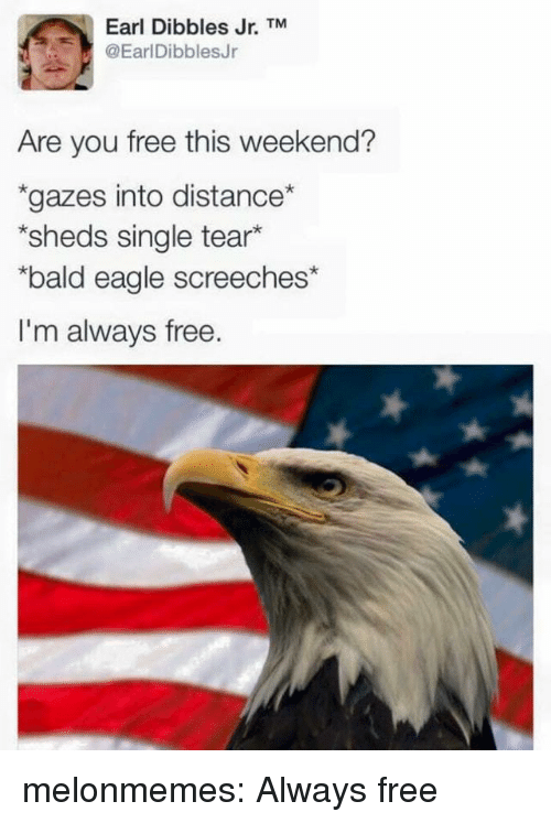 sheds: Earl Dibbles Jr. TM  @EarlDibblesJr  Are you free this weekend?  gazes into distance  sheds single tear*  bald eagle screeches*  I'm always free. melonmemes:  Always free