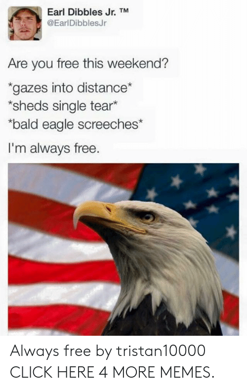 "sheds: Earl Dibbles Jr. TM  @EarlDibblesJr  Are you free this weekend?  gazes into distance*  *sheds single tear*  ""bald eagle screeches*  I'm always free. Always free by tristan10000 CLICK HERE 4 MORE MEMES."