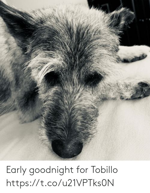 Early: Early goodnight for Tobillo https://t.co/u21VPTks0N