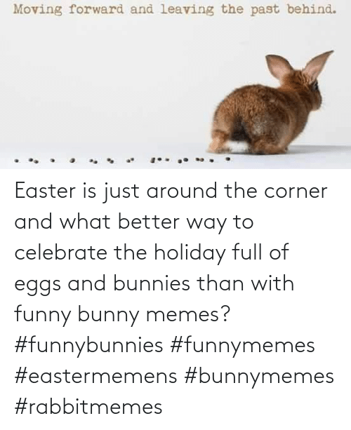 Corner: Easter is just around the corner and what better way to celebrate the holiday full of eggs and bunnies than with funny bunny memes? #funnybunnies #funnymemes #eastermemens #bunnymemes #rabbitmemes