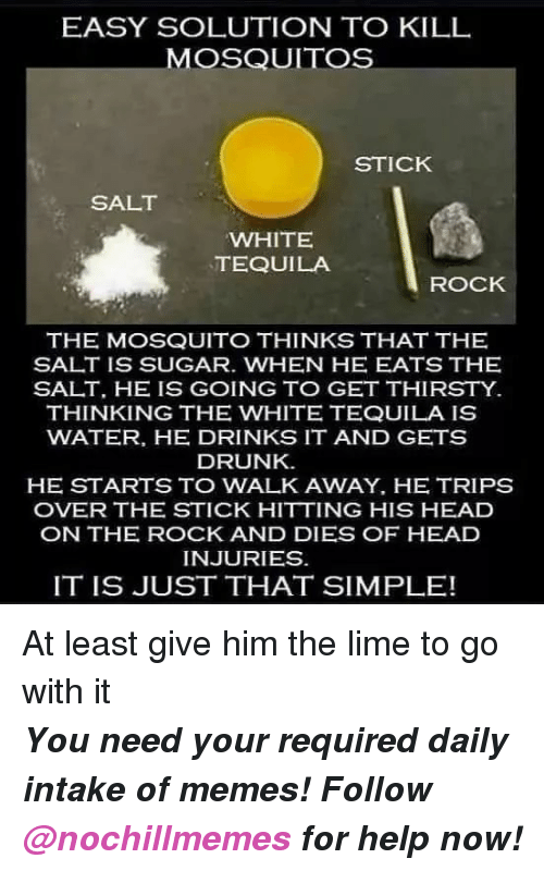 mosquitos: EASY SOLUTION TO KILL  MOSQUITOS  STICK  SALT  WHITE  TEQUILA  ROCK  THE MOSQUITO THINKS THAT THE  SALT IS SUGAR. WHEN HE EATS THE  SALT, HE IS GOING TO GET THIRSTY  THINKING THE WHITE TEQUILA IS  WATER, HE DRINKS IT AND GETS  DRUNK  HE STARTS TO WALK AWAY, HE TRIPS  OVER THE STICK HITTING HIS HEAD  ON THE ROCK AND DIES OF HEAD  INJURIES  IT IS JUST THAT SIMPLE! At least give him the lime to go with it  <p><b><i>You need your required daily intake of memes! Follow <a>@nochillmemes</a> for help now!</i></b><br/></p>