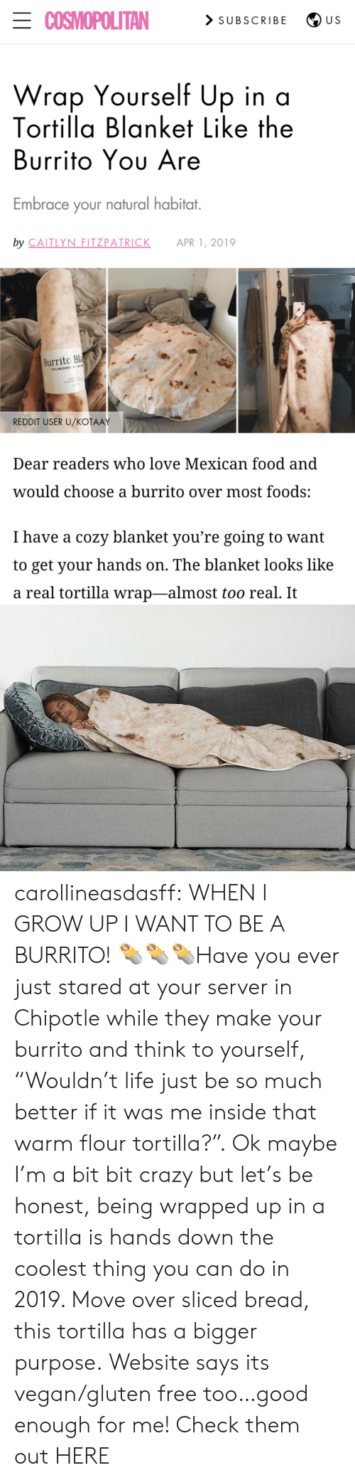 "Subscribe: ECOSMOPOLITAN  > SUBSCRIBE  U S  Wrap Yourself Up in a  Tortilla Blanket Like the  Burrito Yου Are  Embrace your natural habitat.  by CAITLYN FITZPATRICK  APR 1, 2019  Burrito Bla  100% MICROFE  REDDIT USER U/KOŤAAY  Dear readers who love Mexican food and  would choose a burrito over most foods:  I have a cozy blanket you're going to want  to get your hands on. The blanket looks like  a real tortilla wrap-almost too real. It carollineasdasff:  WHEN I GROW UP I WANT TO BE A BURRITO! 🌯🌯🌯Have you ever just stared at your server in Chipotle while they make your burrito and think to yourself, ""Wouldn't life just be so much better if it was me inside that warm flour tortilla?"". Ok maybe I'm a bit bit crazy but let's be honest, being wrapped up in a tortilla is hands down the coolest thing you can do in 2019. Move over sliced bread, this tortilla has a bigger purpose. Website says its vegan/gluten free too…good enough for me! Check them out HERE"