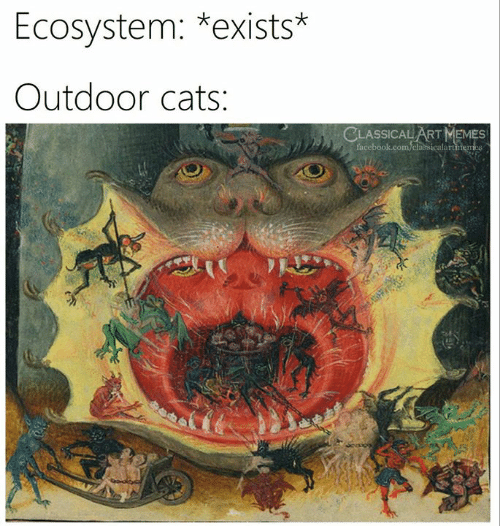 Cats, Facebook, and Memes: Ecosystem: *exists*  Outdoor cats:  CLASSICAL ART MEMES  facebook.com/classicalartmem  mes
