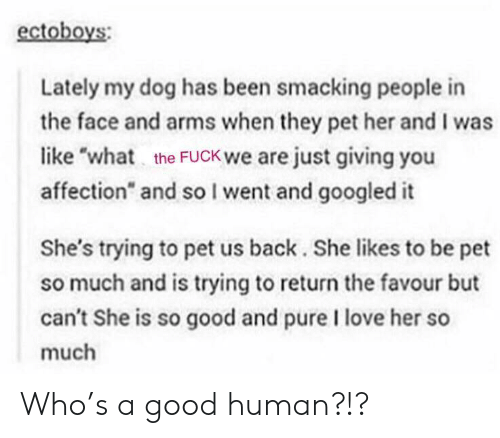 "just giving: ectoboys  Lately my dog has been smacking people in  the face and arms when they pet her and I was  like ""wh the FUCK we are just giving you  affection"" and soI went and googled it  She's trying to pet us back. She likes to be pet  so much and is trying to return the favour but  can't She is so good and pure I love her so  much Who's a good human?!?"