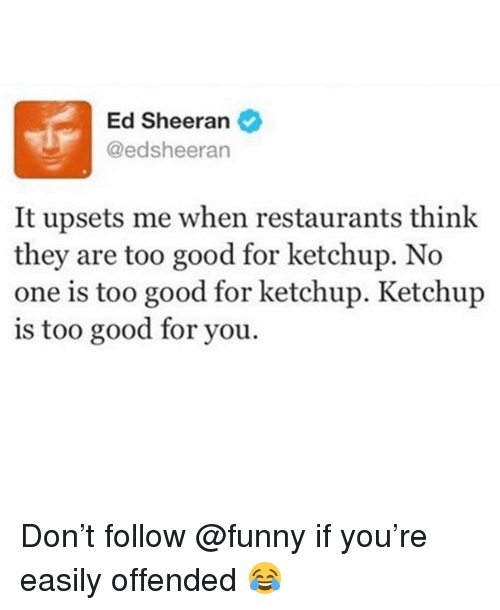 too-good-for-you: Ed Sheeran  @edsheeran  It upsets me when restaurants think  they are too good for ketchup. No  one is too good for ketchup. Ketchup  is too good for you. Don't follow @funny if you're easily offended 😂