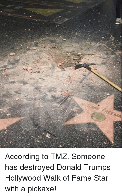 Donald Trumps: EEMA According to TMZ.  Someone has destroyed Donald Trumps Hollywood Walk of Fame Star with a pickaxe!