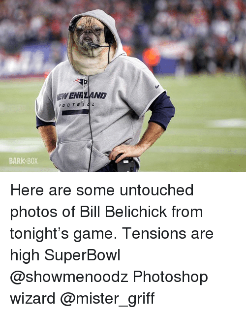 Bill Belichick, Memes, and Photoshop: EH ENALAND  BARK BOX Here are some untouched photos of Bill Belichick from tonight's game. Tensions are high SuperBowl @showmenoodz Photoshop wizard @mister_griff
