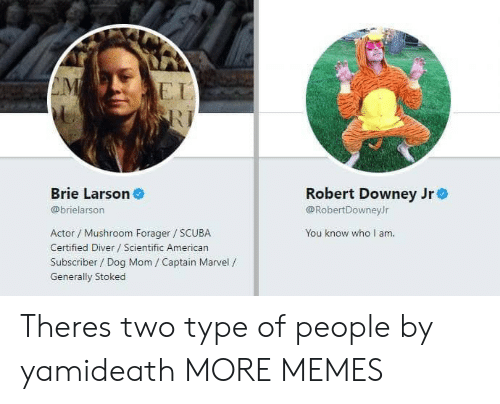 Type Of People: EI  Brie Larson  Robert Downey Jre  @RobertDowneyJr  You know who I am  @brielarson  Actor / Mushroom Forager SCUBA  Certified Diver Scientific American  Subscriber / Dog Mom / Captain Marvel /  Generally Stoked Theres two type of people by yamideath MORE MEMES