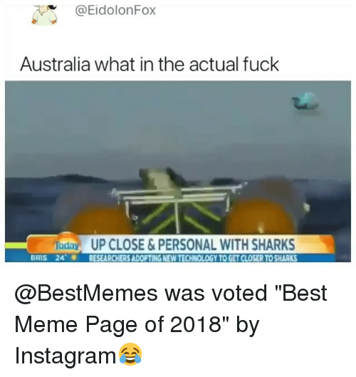 "Instagram, Meme, and Memes: @EidolonFox  Australia what in the actual fuck  da  24,  UP CLOSE&PERSONAL WITH SHARKS  RESEARCHERS ADOPTING NEW TECHNOLOGY TO GET CLOSER TO SHARKS  BRIS @BestMemes was voted ""Best Meme Page of 2018"" by Instagram😂"