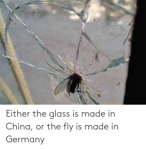 glass: Either the glass is made in China, or the fly is made in Germany