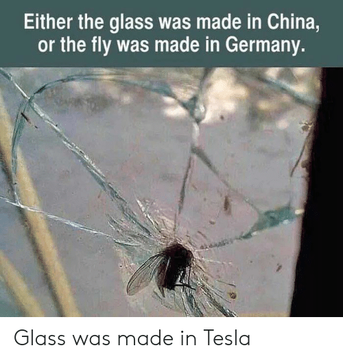 China, Germany, and Tesla: Either the glass was made in China,  or the fly was made in Germany. Glass was made in Tesla
