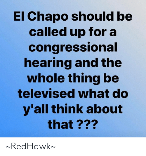 El Chapo, Memes, and 🤖: El Chapo should be  called up for a  congressional  hearing and the  whole thing be  televised what do  y'all think about  that ??? ~RedHawk~