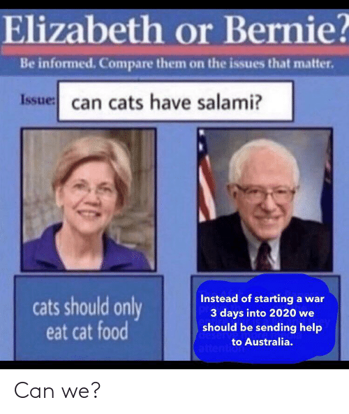 We Should: Elizabeth or Bernie?  Be informed. Compare them on the issues that matter.  Issue: can cats have salami?  Instead of starting a war  3 days into 2020 we  should be sending help  cats should only  eat cat food  deserv  to Australia.  attention Can we?