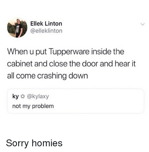 Close The Door: Ellek Linton  @elleklinton  When u put Tupperware inside the  cabinet and close the door and hear it  all come crashing down  ky @kylaxy  not my problem Sorry homies