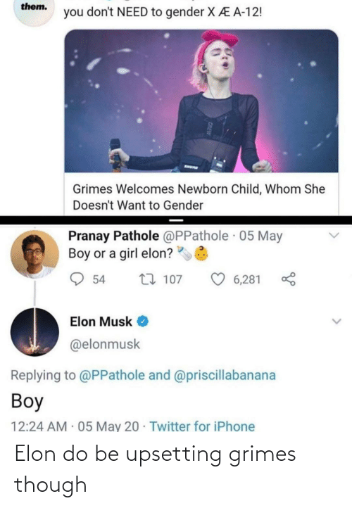 elon: Elon do be upsetting grimes though