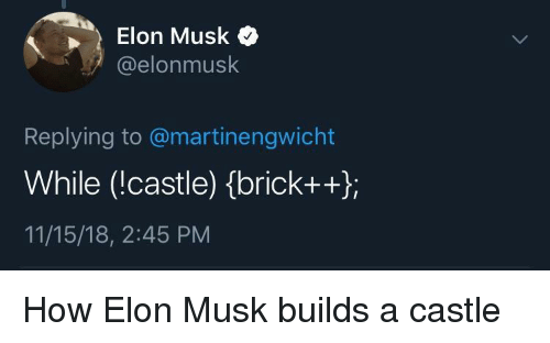 How, Castle, and Elon Musk: Elon Musk  @elonmusk  Replying to @martinengwicht  While (!castle) (brickt+);  11/15/18, 2:45 PM How Elon Musk builds a castle