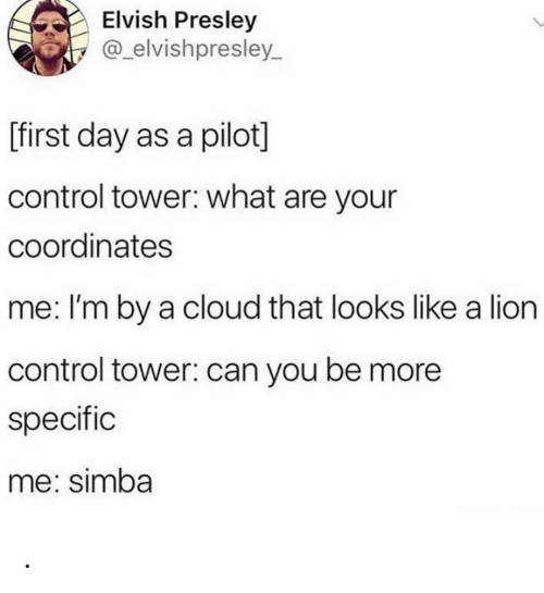 Control, Cloud, and Lion: Elvish Presley  @_elvishpresley  L  [first day as a pilot]  control tower: what are your  coordinates  me: I'm by a cloud that looks like a lion  control tower: can you be more  specific  me: simba .
