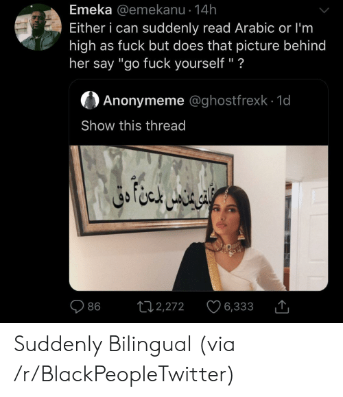 "Arabic: Emeka @emekanu 14h  Either i can suddenly read Arabic or I'm  high as fuck but does that picture behind  her say ""go fuck yourself"" ?  Anonymeme @ghostfrexk 1d  Show this thread  ال خا متن دق  L12,272  86  6,333 Suddenly Bilingual (via /r/BlackPeopleTwitter)"