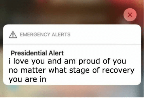 Love, I Love You, and Proud: EMERGENCY ALERTS  Presidential Alert  i love you and am proud of you  no matter what stage of recovery  you are in