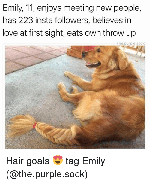 Goals, Love, and Memes: Emily, 11, enjoys meeting new people,  has 223 insta followers, believes in  love at first sight, eats own throw up  The purple.sock Hair goals 😍 tag Emily (@the.purple.sock)