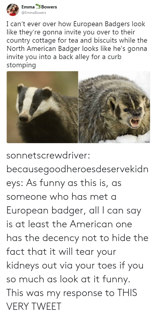 All I Can Say Is: Emma Bowers  @EmmaBowers  I can't ever over how European Badgers look  like they're gonna invite you over to their  country cottage for tea and biscuits while the  North American Badger looks like he's gonna  invite you into a back alley for a curb  stomping  Photo sonnetscrewdriver: becausegoodheroesdeservekidneys: As funny as this is, as someone who has met a European badger, all I can say is at least the American one has the decency not to hide the fact that it will tear your kidneys out via your toes if you so much as look at it funny. This was my response to THIS VERY TWEET
