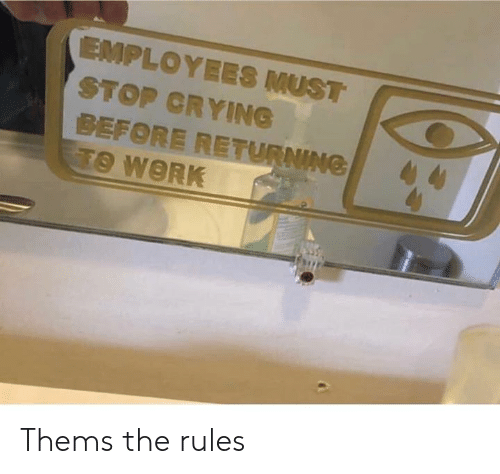 Crying, Dank, and Work: EMPLOYEES MUST  STOP CRYING  BEFORE RETURNING  TO WORK Thems the rules