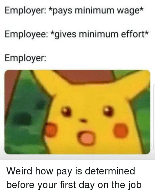 first day on the job: Employer: *pays minimum wage*  Employee: *gives minimum effort*  Employer: Weird how pay is determined before your first day on the job