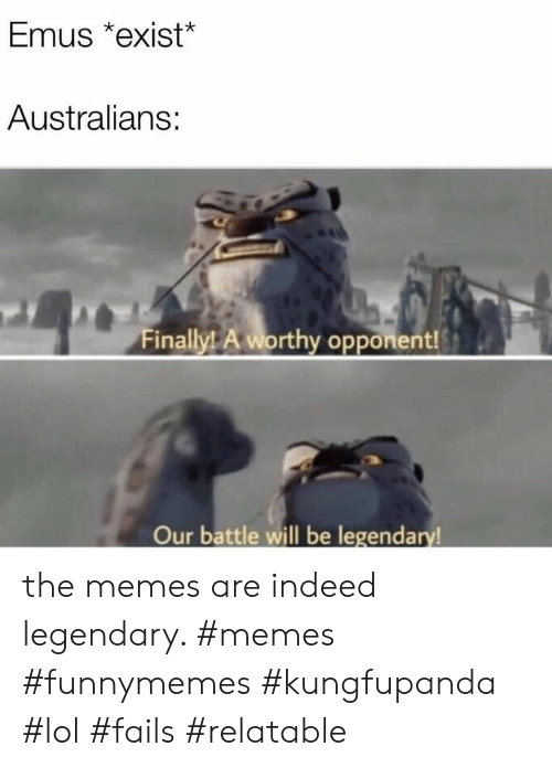Lol, Memes, and Indeed: Emus *exist*  Australians:  Finally! A worthy opponent!  Our battle will be legendary the memes are indeed legendary. #memes #funnymemes #kungfupanda #lol #fails #relatable