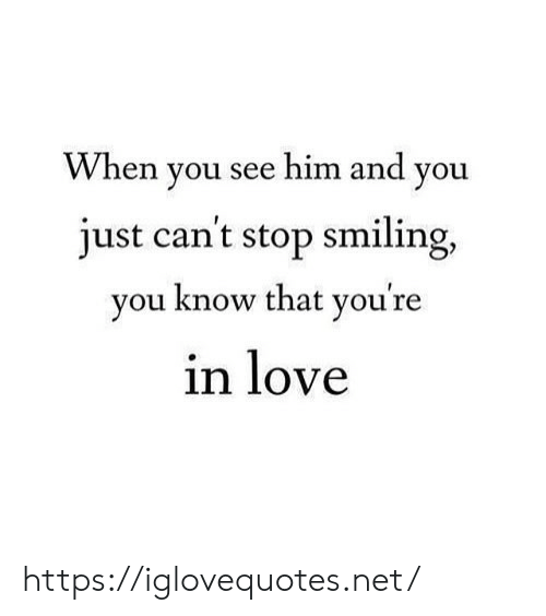 Love, Net, and Him: en you see him and you  VV h  just cant stop smiling,  vou know that vou're  in love https://iglovequotes.net/