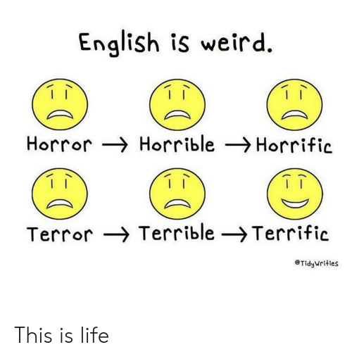 horror: English is weird  Horror Horrible Horrific  Terror Terrible -Terrific  TidyWrities This is life