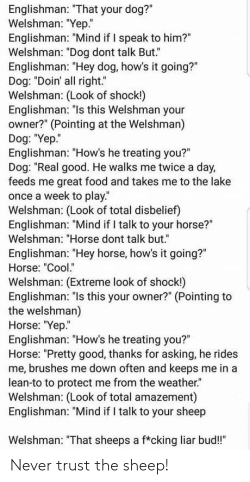 "Food, Lean, and Cool: Englishman: ""That your dog?""  Welshman: ""Yep.""  Englishman: ""Mind if I speak to him?""  Welshman: ""Dog dont talk But.""  Englishman: ""Hey dog, how's it going?""  Dog: ""Doin' all right.""  Welshman: (Look of shock!)  Englishman: ""ls this Welshman your  owner?"" (Pointing at the Welshman)  Dog: ""Yep.  Englishman: ""How's he treating you?""  Dog: ""Real good. He walks me twice a day,  feeds me great food and takes me to the lake  once a week to play.  Welshman: (Look of total disbelief)  Englishman: ""Mind if I talk to your horse?""  Welshman: ""Horse dont talk but.""  Englishman: ""Hey horse, how's it going?""  Horse: ""Cool.""  Welshman: (Extreme look of shock!)  Englishman: ""ls this your owner?"" (Pointing to  the welshman)  Horse: ""Yep""  Englishman: ""How's he treating you?""  Horse: ""Pretty good, thanks for asking, he rides  me, brushes me down often and keeps me in a  lean-to to protect me from the weather.  Welshman: (Look of total amazement)  Englishman: ""Mind if I talk to your sheep  Welshman: ""That sheeps a f*cking liar bud!"" Never trust the sheep!"