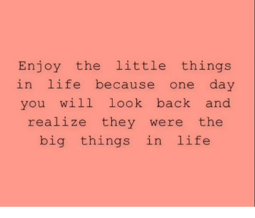 Life, Back, and Big: Enjoy the little things  in life because one day  you will look back and  realize they were the  big things in life
