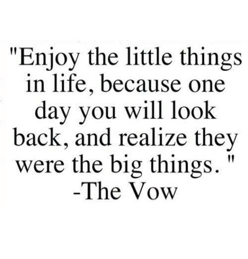 """Life, The Vow, and Back: """"Enjoy the little things  in life, because one  day you will look  back, and realize they  were the big things.'""""  The Vow"""