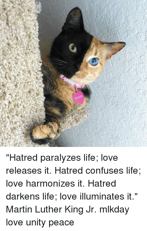 "Paralyzation: enNad ""Hatred paralyzes life; love releases it. Hatred confuses life; love harmonizes it. Hatred darkens life; love illuminates it."" Martin Luther King Jr. mlkday love unity peace"