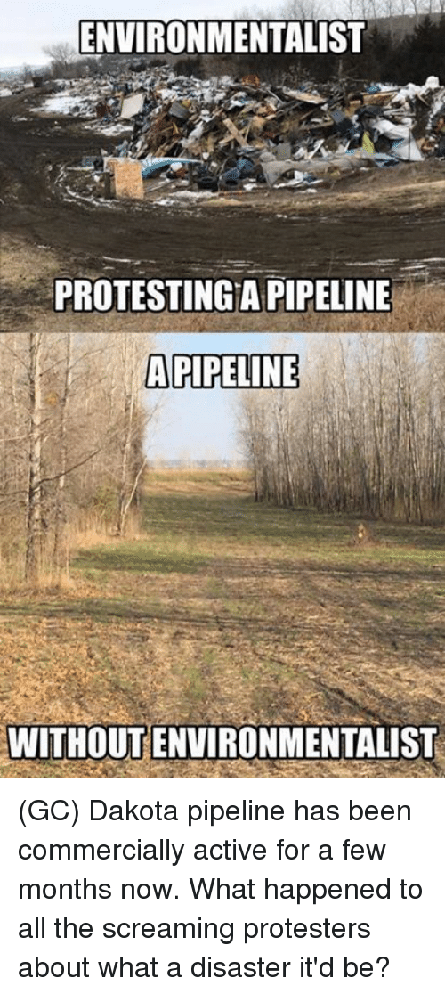 Dakota Pipeline: ENVIRONMENTALIST  PROTESTINGA PIPELINE  APIPELINE  WITHOUT ENVIRONMENTALIST (GC) Dakota pipeline has been commercially active for a few months now. What happened to all the screaming protesters about what a disaster it'd be?